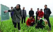 Sinh viên Trung Quốc làm việc cùng nông dân tạo kết quả bất ngờ