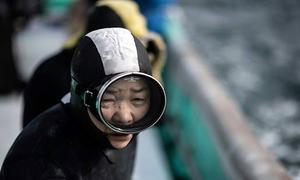 Những 'nàng tiên cá' tuổi 60 ở Nhật Bản