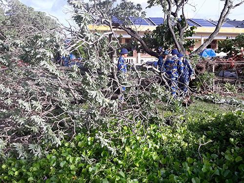Các chiến sĩ Hải quân dọn dẹp cây xanh trên đảo Song Tử Tây sau bão. Ảnh: Nguyễn Đăng Hồng