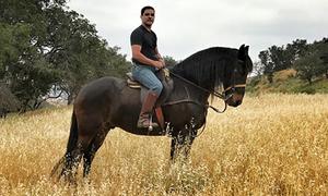 Người hùng cứu hàng trăm con ngựa trong cháy rừng California