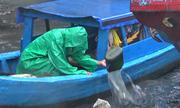Ngư dân xã đảo ở TP HCM liên tục tát nước, đề phòng ghe chìm