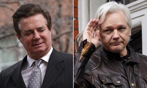 Paul Manafort (trái), cựu trợ lý của Trump, và ông chủ WikiLeaks Julian Assange. Ảnh: New York Post.