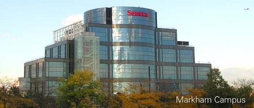 Miễn chứng minh tài chính khi du học Canada cùng Seneca College - SDS