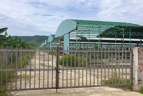 Nhiều hạng mục nhà xưởng của dự án ở huyện Kỳ Anh bị tốc mái, để không một năm nay. Ảnh: Đức Hùng