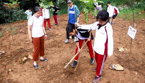 Học sinh hăng hái tham gia trồng rừng. Theo đại diện trường, với hoạt động này, các em không chỉ biết cách bảo vệ thiên nhiên mà còn học được những kỹ năng trong cuộc sống như trồng cây, chăm sóc cây, lao động...