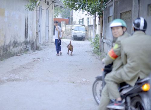 Thấy đội bắt chó thả rông, một chủ nuôi nhanh chóng xích chó đưa về nhà. Ảnh: Tất Định