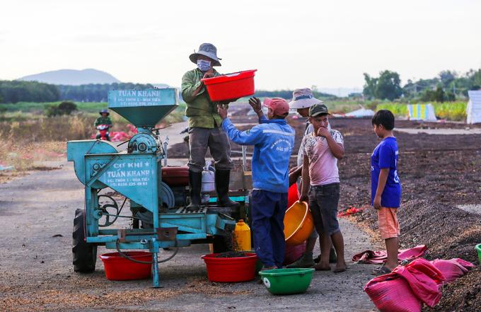 Dựng chòi phơi cà phê trên sân bay bỏ hoang ở Kon Tum