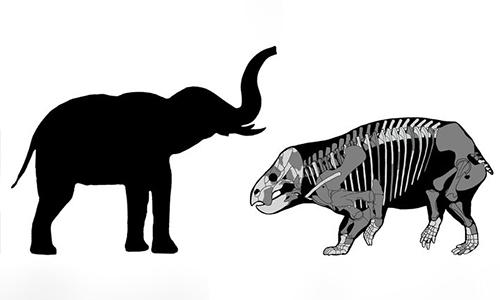 Lisowicia bojani có kích thước tương đương loài voi ngày nay. Ảnh: Popular Mechanics.