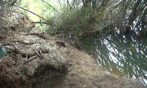 Sạt lở ven sông ở Quảng Ngãi, người dân phải bỏ nhà đi nơi khác