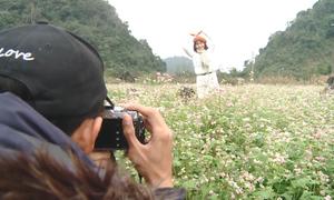 Những cánh đồng hoa tam giác mạch nở rộ ở Hà Giang