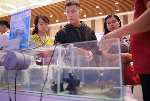 Mô hình kết hợp nuôi tôm và cá rô phi được nhiều người quan tâm. Ảnh: Nguyễn Đông.
