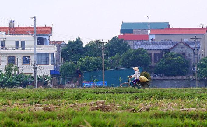Trường đua ngựa 10.000 tỷ đồng sẽ xây tại ngoại thành Hà Nội
