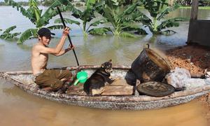 Nhà dân Tam Kỳ ngập sâu trong nước lũ