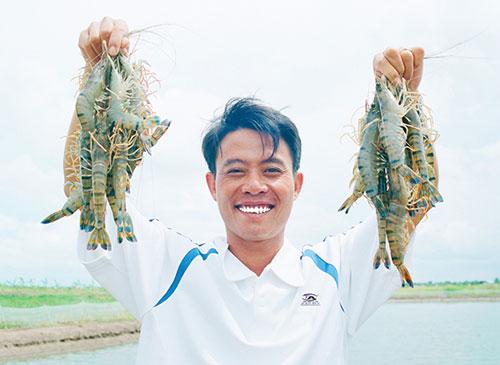 Ths Lê Anh Xuân với sản phẩm tôm sú nuôi trồng theo tiêu chuẩn GAP/CoC. Ảnh: NVCC.