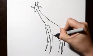 Vẽ con vật mà không nhấc bút