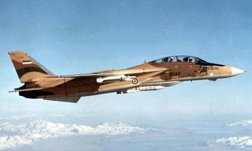 Một chiếc F-14 Tomcat của không quân Iran. Ảnh: Reddit.