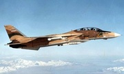 Quả tên lửa của tiêm kích Iran bắn hạ 3 chiến đấu cơ Iraq năm 1981