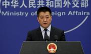 Trung Quốc hoan nghênh nỗ lực giải quyết vụ bắt giám đốc Huawei