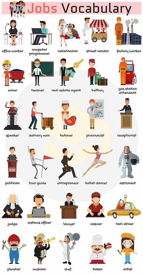 Từ vựng tiếng Anh về những nghề nghiệp phổ biến