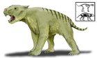 Tái tạo hoàn chỉnh bộ xương loài sư tử túi thời tiền sử