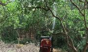 Cỗ xe phun thuốc '5 trong 1' của nông dân Bình Phước