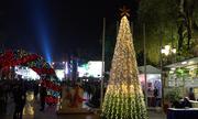 Cây thông Noel làm từ 1.800 vỏ chai nhựa ở Hà Nội