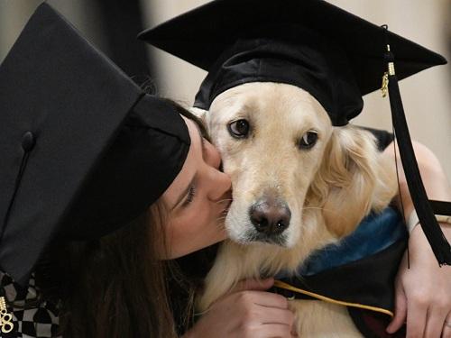 Chú chó bốn tuổi sẽ theo Brittany Hawley trong chặng đường kế tiếp. Ảnh: AP