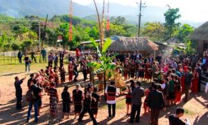 Người Pa Kô ăn mừng Tết lúa mới