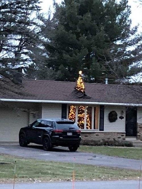 Nhà có thể sửa nhưng cây thông phải giữ nguyên.