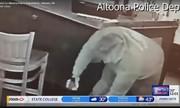 Cựu binh Mỹ tung đòn đoạt súng từ tay tên cướp