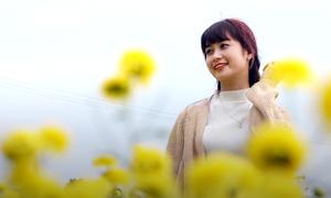 Hoa cúc chi nở rộ hút khách trải nghiệm ở Hưng Yên