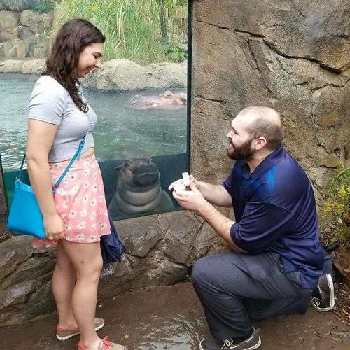Nhân chứng của buổi cầu hôn.