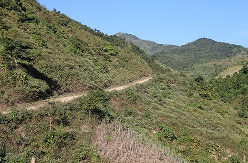 Đường độc đạo dẫn vào bản Chà Lắn, xã Hưu Lập (Kỳ Sơn) nơi đã có phụ nữ mang thai nhi rời bản qua Trung Quốc bán. Ảnh: Nguyễn Hải.