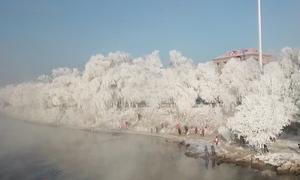 Khu rừng sương muối ven sông tại Trung Quốc