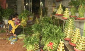 Làng trồng cây phát lộc ở Thái Bình tất bật vào vụ Tết