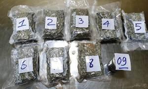 Hơn 2 kg ma túy giấu trong hành lý gửi từ Mỹ về Việt Nam