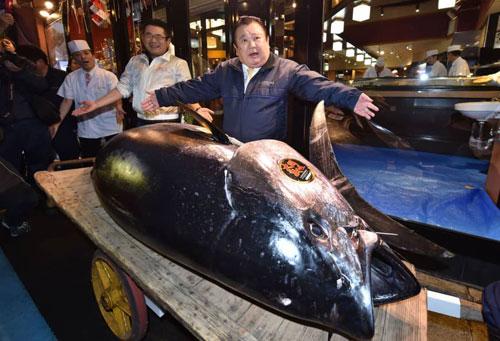 Con cá ngừ nặng 278 kg lập kỷ lục mới về giá. Ảnh: AFP.