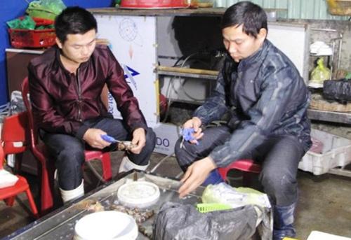 Nhân viên của bà Hạnh bị bắt quả tang bơm tạp chất vào tôm sú. Ảnh: Cảnh sát cung cấp