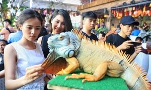 Thú chơi bò sát của giới trẻ ở Sài Gòn