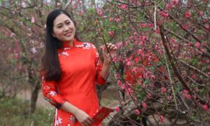 Hàng nghìn người Hà Nội đổ xô chụp ảnh với hoa đào