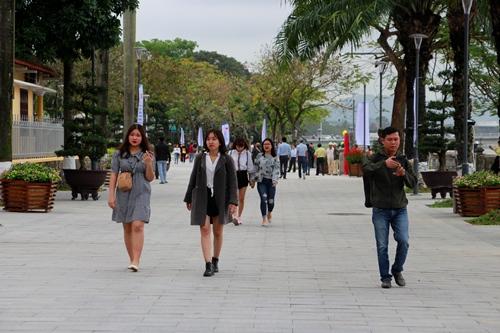 Tuyến đường đi bộ Nguyễn Đình Chiểu được lót đá, trồng mới cây xanh. Ảnh: Võ Thạnh