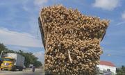 Xe tải chá» hà ng siêu khủng trên xa lá»