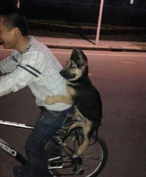 Em không chê anh nghèo thì leo lên xe anh đèo.
