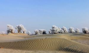 Mùa đông trên sa mạc lớn nhất Trung Quốc