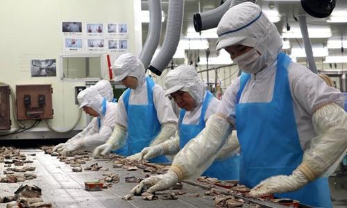 Việt Nam sẽ đưa 120.000 lao động đi làm việc ở nước ngoài trong năm 2019