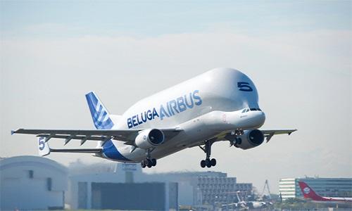 Siêu vận tải cơ Beluga. Ảnh: CNN.