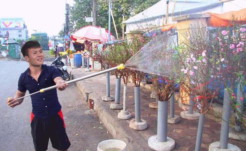 ... thì Quang Hải vẫn đang tích cực chăm sóc số còn lại ở nhà.