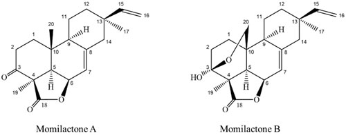 Công thức hóa học của hai hợp chất.