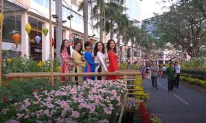 Khung cảnh làng quê ở đường hoa Phú Mỹ Hưng