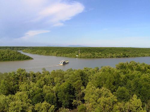 [Caption]Huyện Cần Giờ có hệ thống sông, rạch chằng chịt. Ảnh: Wikipedia